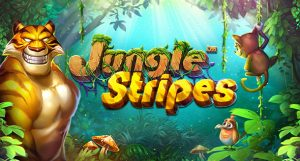 Jungle Stripes - Out Now